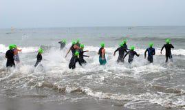Nadada del Triathlon Foto de archivo