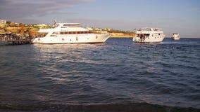 Nadada del yate de la travesía del mar al puerto del muelle en el Mar Rojo en puesta del sol metrajes