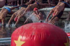 NADADA 2015 do PORTO do DIA de NATAL, BARCELONA, porto Vell - 25 de dezembro: os nadadores começam a raça Imagens de Stock