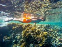 Nadada joven del tubo respirador del muchacho en agua poco profunda con los pescados coralinos Fotografía de archivo