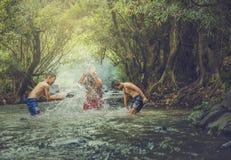 Nadada no córrego Fotografia de Stock Royalty Free