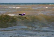 Nadadas del Schnauzer gigante en el mar con el tirador fotografía de archivo