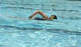 Nadador Imagens de Stock Royalty Free