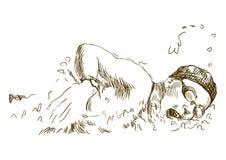 Nadador ilustração stock