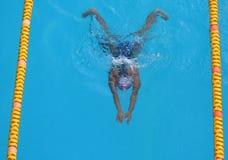 Nadador Imagen de archivo libre de regalías
