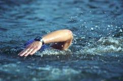 Nadador Foto de Stock