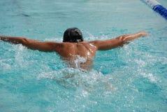 Nadador da borboleta fotografia de stock royalty free