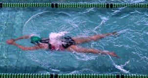 Nadador de sexo femenino apto que hace el movimiento de pecho en la piscina almacen de video