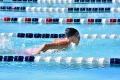 Nadador de sexo femenino de la mariposa Fotos de archivo libres de regalías