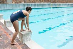 Nadador de sexo femenino que se prepara para zambullirse en piscina Fotografía de archivo