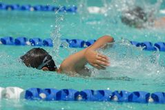 Nadador del estilo libre delante del competidor Fotos de archivo