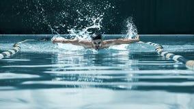 Nadador dinámico y apto en el casquillo que respira realizando el movimiento de mariposa fotos de archivo