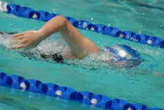 Nadador do estilo livre foto de stock royalty free
