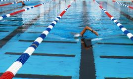Nadador do estilo livre fotografia de stock royalty free