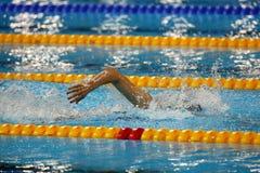 Nadador libre del estilo en la acción Foto de archivo