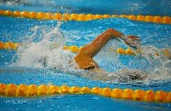 Nadador libre del estilo en la acción Fotos de archivo