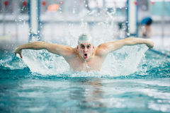 Nadador masculino, executando a técnica do curso de borboleta na piscina interior Efeito do vintage Imagens de Stock Royalty Free