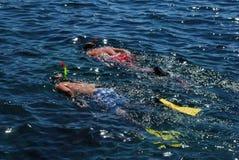 Nadadores Fotografia de Stock Royalty Free