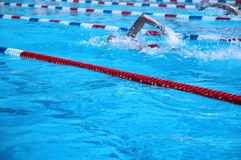Nadadores Imágenes de archivo libres de regalías