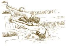 Nadadores ilustração royalty free