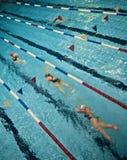 Nadadores de la piscina Fotografía de archivo libre de regalías