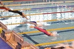 Nadadores de sexo femenino Fotografía de archivo