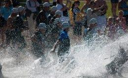 Nadadores de Triathalon Fotos de archivo libres de regalías