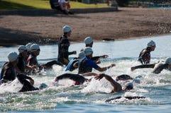 Nadadores de Triathalon Imagen de archivo libre de regalías