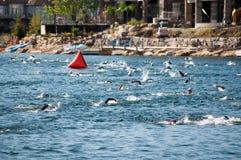Nadadores de Triathalon Imagen de archivo