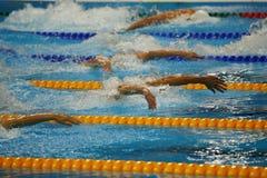 Nadadores del estilo de la mariposa en la acción Imagen de archivo