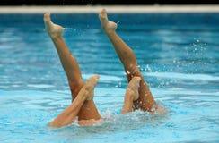 Nadadores sincronizados Fotografía de archivo