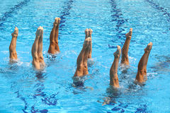 Nadadores sincronizados Fotografía de archivo libre de regalías