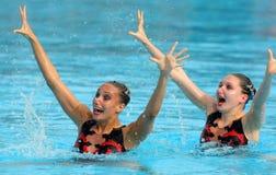 Nadadores synchro britânicos foto de stock royalty free