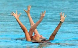 Nadadores synchro britânicos imagens de stock royalty free