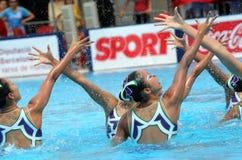 Nadadores synchro japoneses imagens de stock