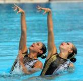 Nadadores synchro mexicanos foto de stock