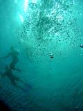 Nadadores y snorkellers Imágenes de archivo libres de regalías