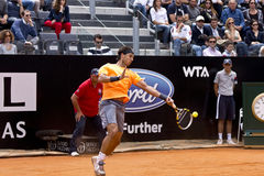 Nadal Stock Photography