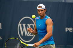 Nadal 102 Royalty Free Stock Images