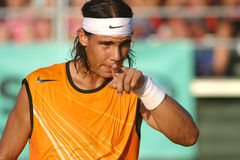 Nadal 030 royalty free stock image