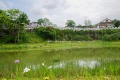 Nadbrzeżny antyczny kamienny forteca na wzroscie w chmurnym wiosny morn obrazy royalty free