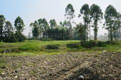 Nadbrzeżny buldożeru bekowisko w wsi na pogodnym letnim dniu obraz royalty free
