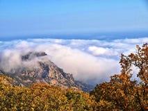 nadchodząca mgła Zdjęcia Stock