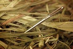 Nadel in einem Heuschober. Stockbilder