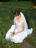 Nadenkende bruid op bluebonnetgebied Stock Afbeeldingen