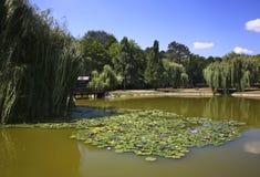Naderde park in Debrecen. Hungary Stock Image
