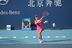 Nadia Petrova (Rusia), Professionele tennisspeler royalty-vrije stock afbeelding