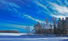Nadjeziorni drewna & zamarznięty jezioro obraz stock