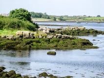 Nadmorski Irlandia Obraz Royalty Free