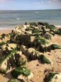 Nadmorski skały Zdjęcie Royalty Free